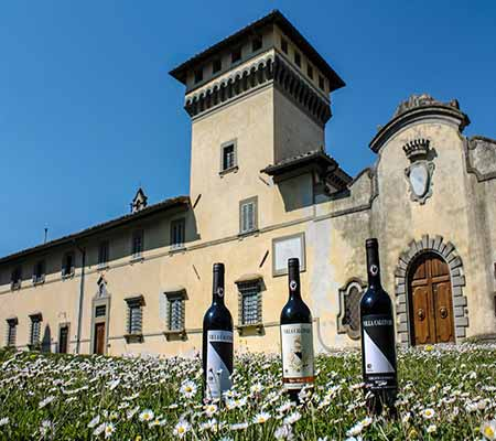 Large Mediterranean style building in field of daisies with wine bottles in foreground.